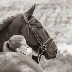 fotoshoot-paard-hond-2681.jpg