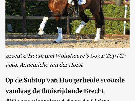 Horses.nl