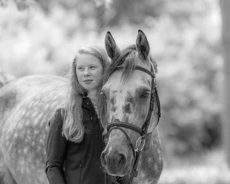 Portret fotoshoot paard