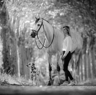 fotoshoot-paard-hond-6358.jpg