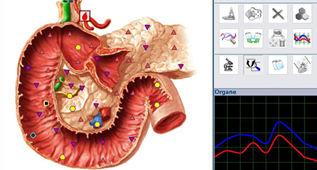 bioresonance-therapie-energetique-onde-e
