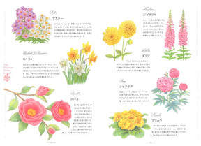 「ターシャが愛した花たち」 花イラスト
