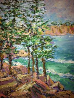 Trees and Seas