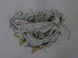 """Nest"""