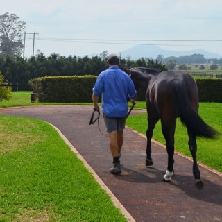2020 Inglis Classic Prep for Newhaven Park