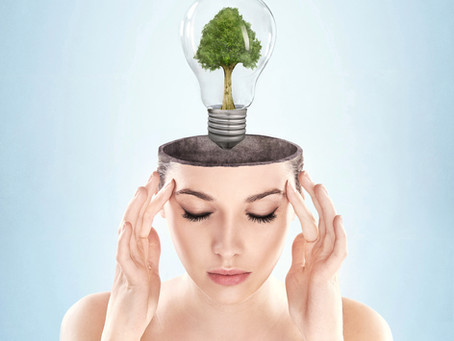 How to Cultivate an Open Mind