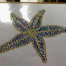 Starfish_2.jpeg