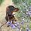 Thumbnail: Belle Maple Tweed Set