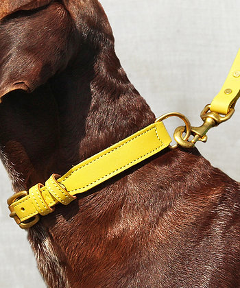 Kera Lux Collar & Lead Set