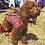 Thumbnail: Red Camouflage Dog Jacket