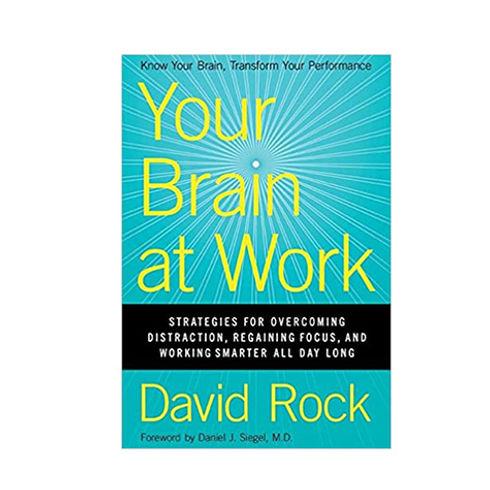 your brain.jpg