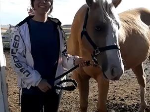 Pegasus Found His Forever!