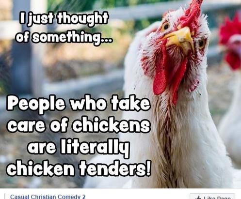 Crazy Chicken Tenders