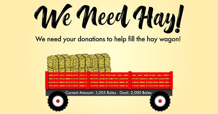 Hay_Fundraiser (1).jpg