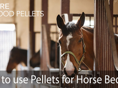 How to use Pure Wood Pellets for Horse Bedding?