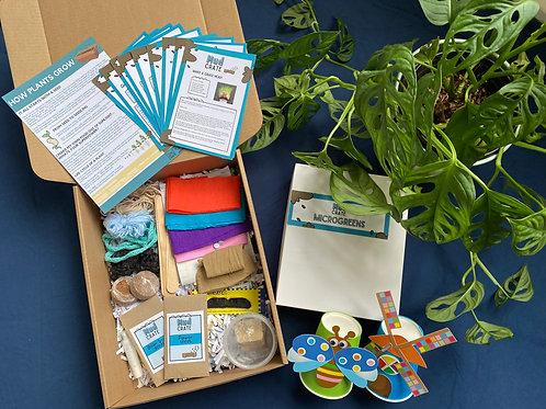 Agaaain Mud Crate + Free Microgreens Kit