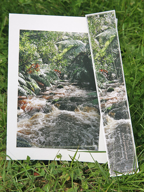 Torrents of Tannin: Greeting Card