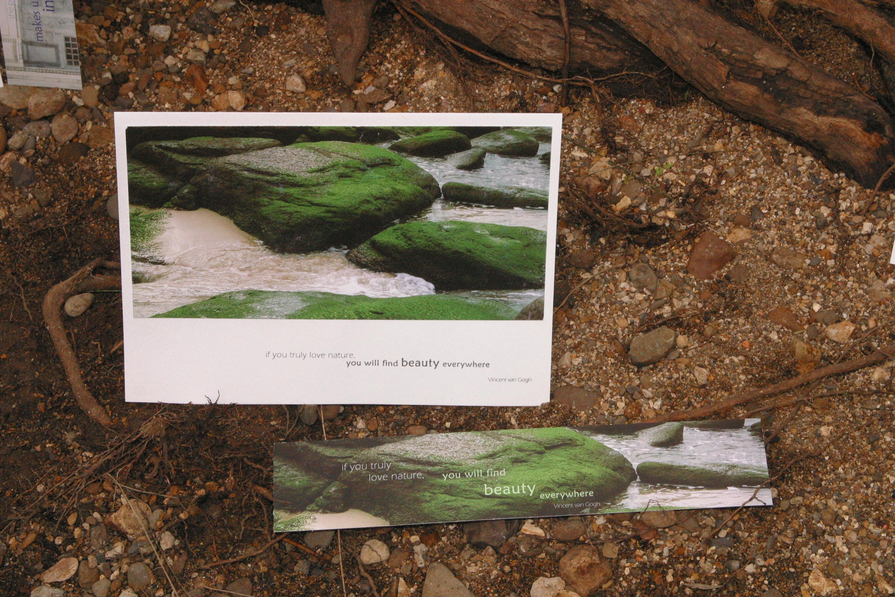 Margaret River Rocks