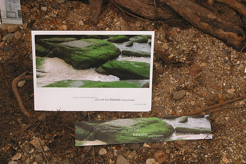 Margaret River Rocks: Greeting Card