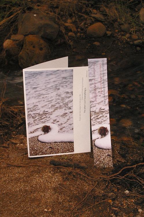 Flotsam & Foam: Greeting Card