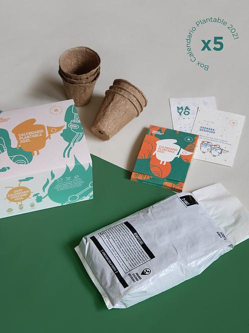 5 Box Calendario Plantable 2021