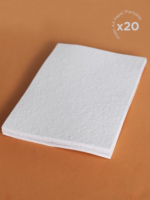 20 Hojas A4 Papel Plantable (sin impresión)