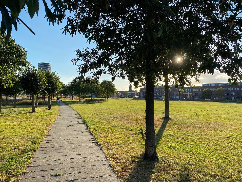 Amaliapark