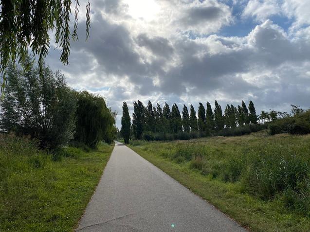 Veldhuizerpark, Veldhuizen