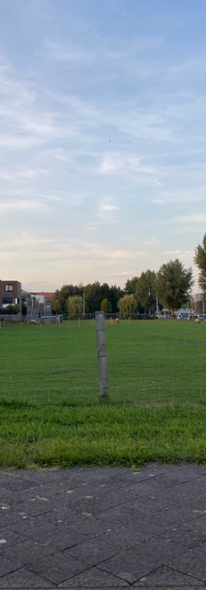 Langerak Leidsche Rijn
