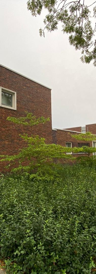 Bomen- en bloemenbuurt Woerden