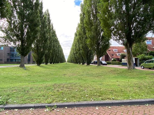 Rijnkennemerlaan, Parwijk