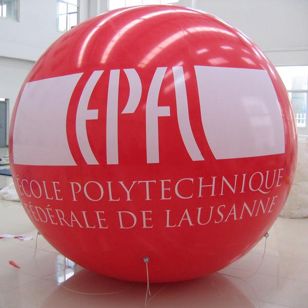epfl full print.jpg