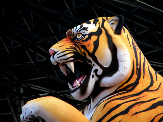 inflatables tiger
