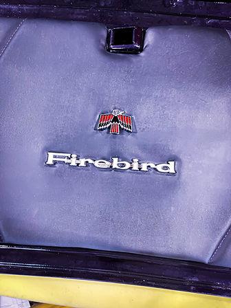 firebird trunk cover 2.JPG