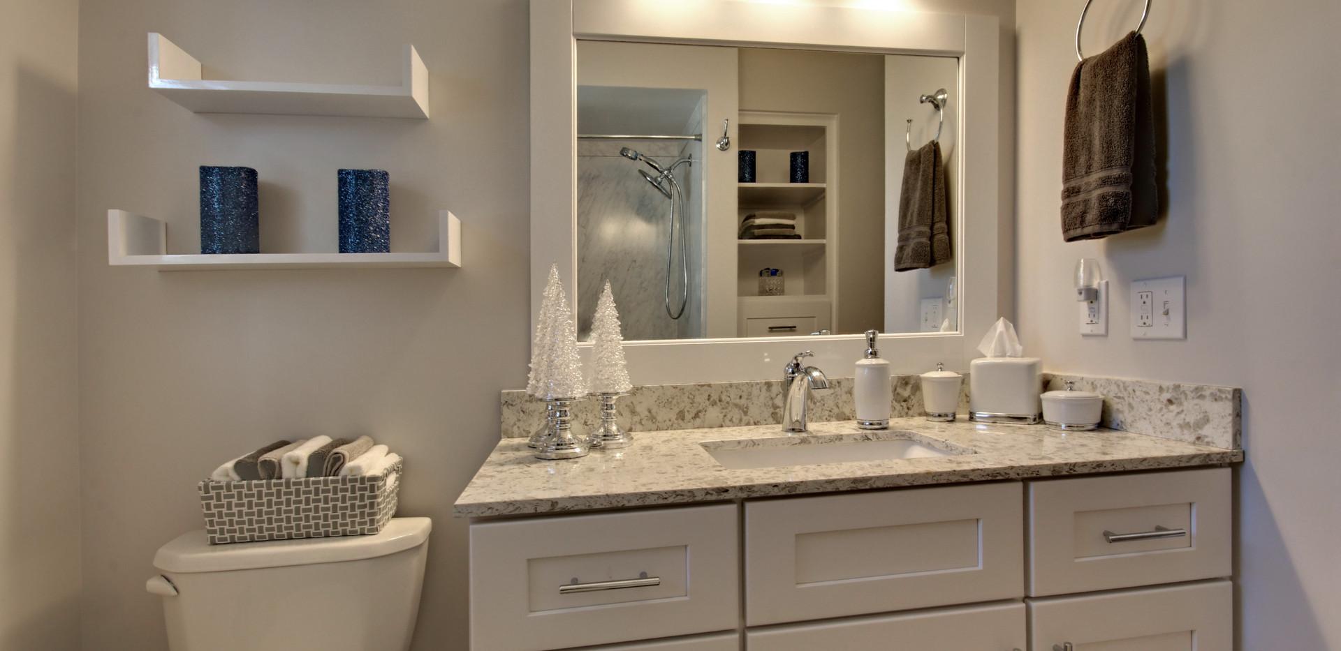 Vanity view of full bathroom remodel in Grandville