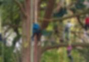 Découvrez la grimpe d'arbres au Parcabout