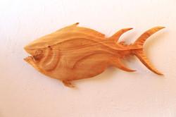 Tuna Fish #2