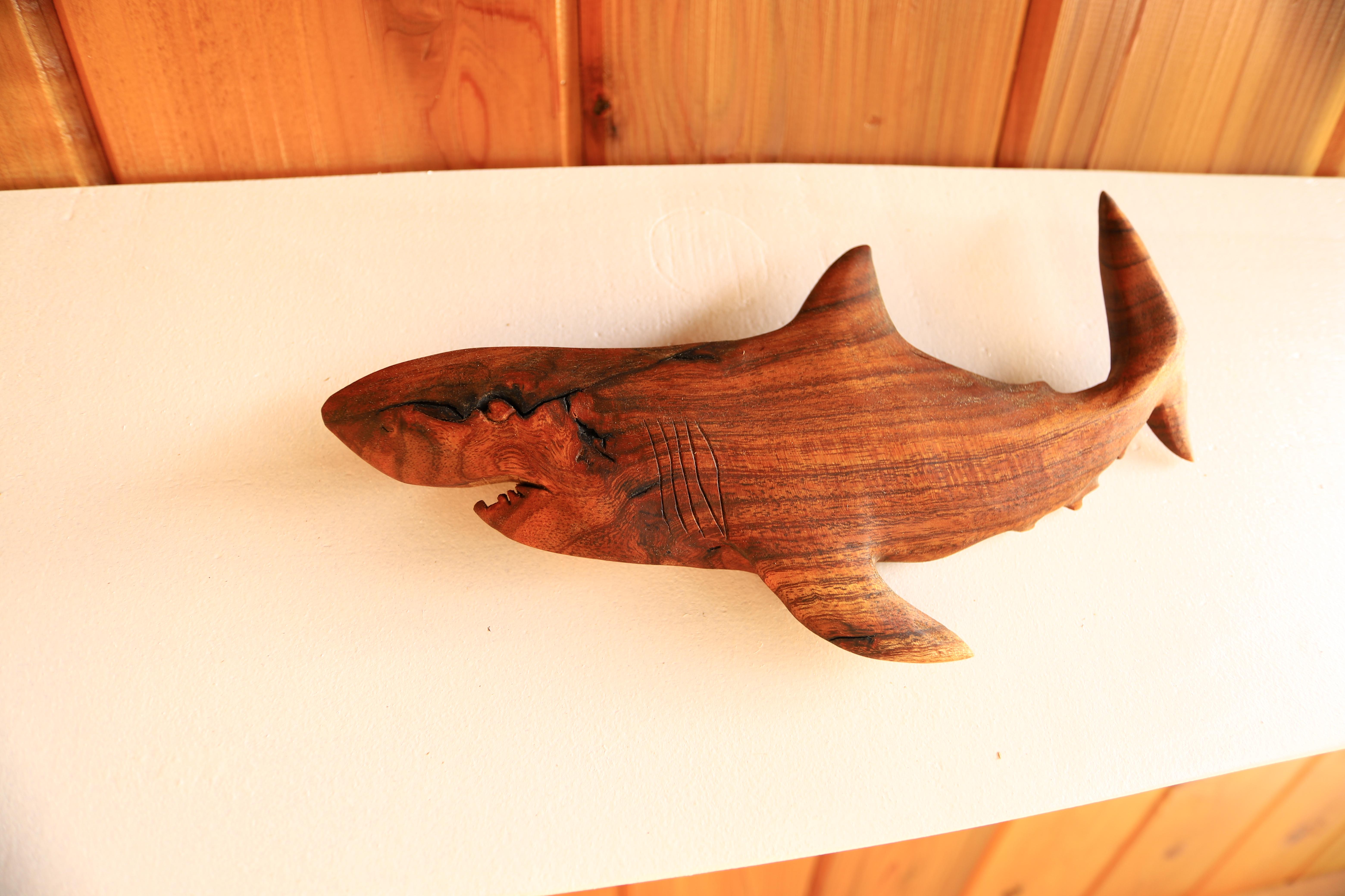 Tiger Shark #2