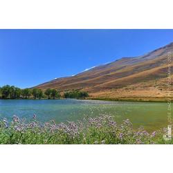 Oyoun orghosh - #lebanon  #oyounorghosh #cedars #north #lebanon