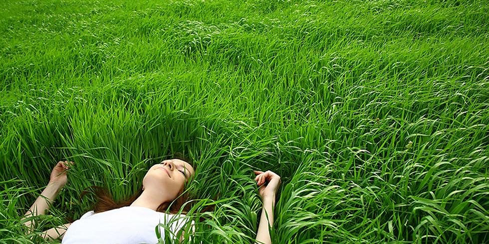 Mindfulness herfsttraining op dinsdagavond (18.09 - 06.11) (1)