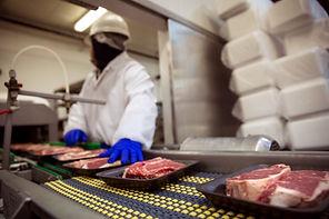 MeatConveyor.jpeg
