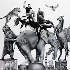 Off Balance - Ark