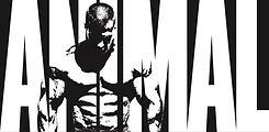 ANIMAL bodybuilding supplements logo