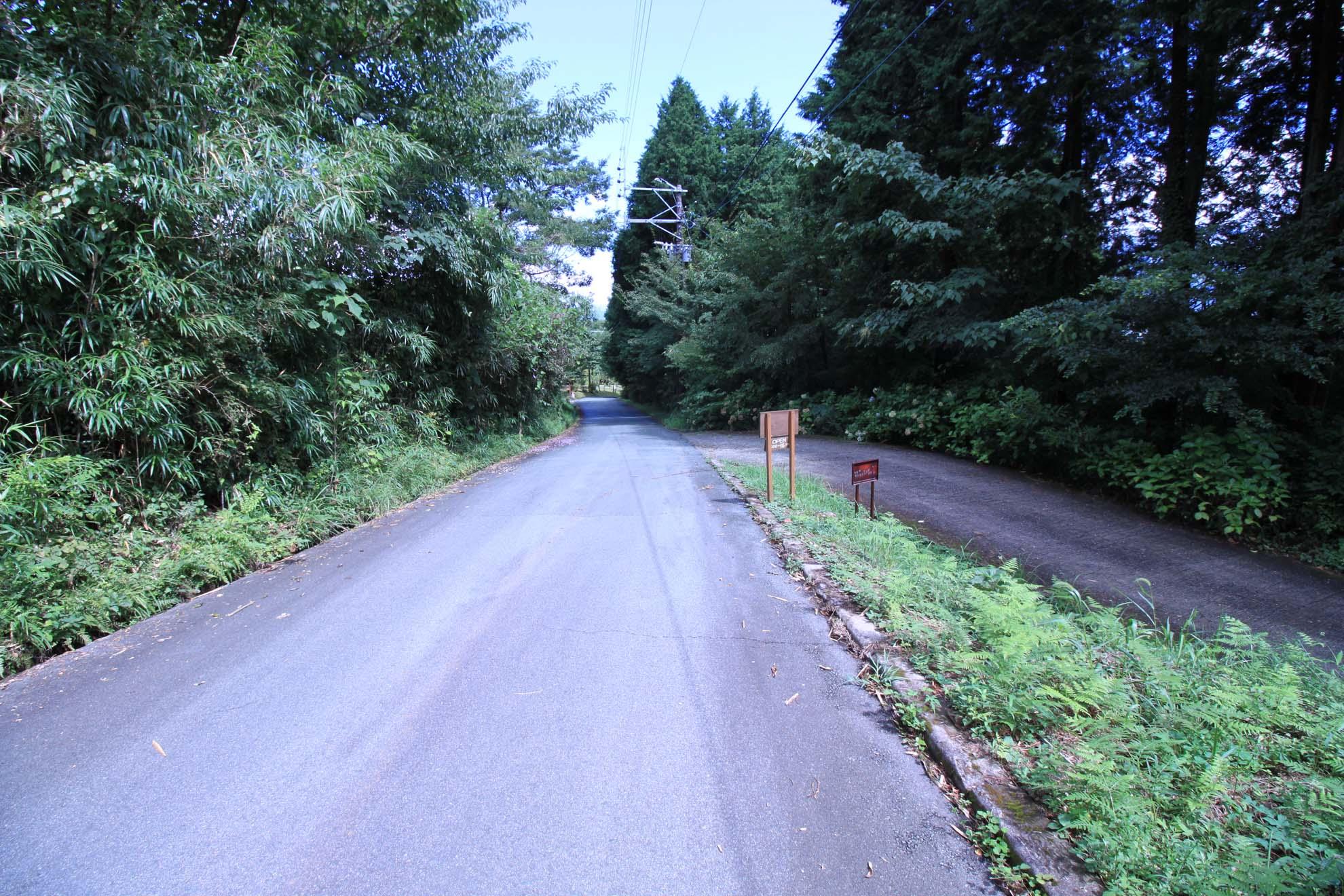 分譲地に続く村道