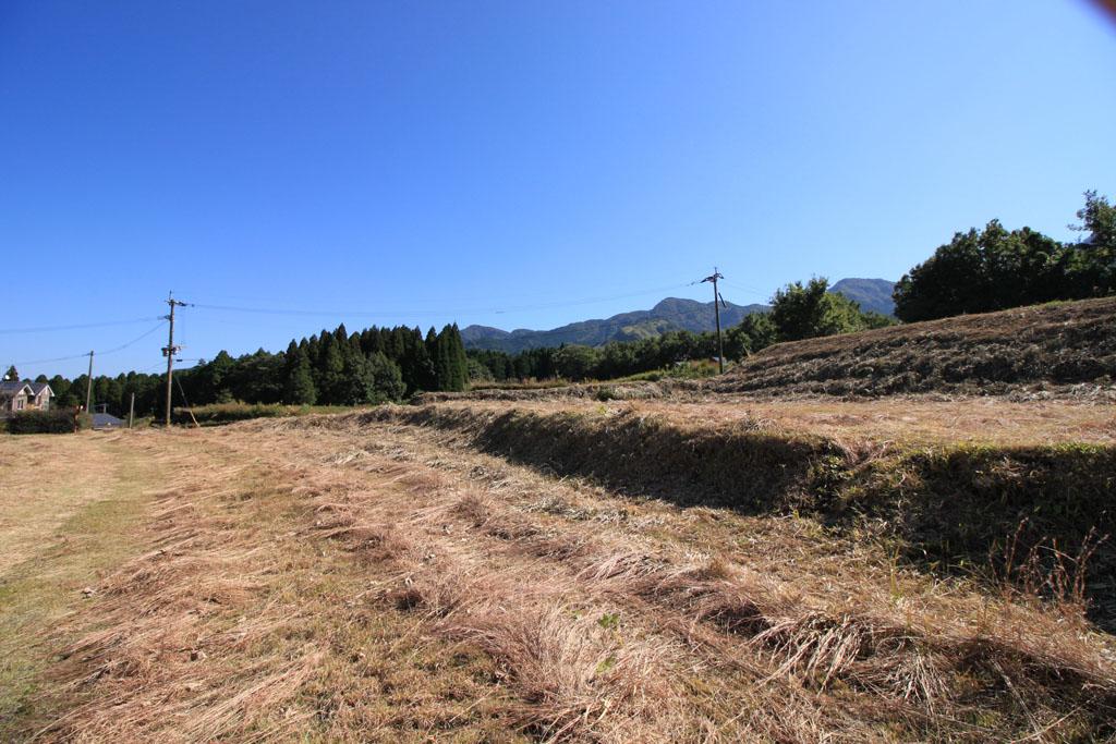 下の段 東側の風景