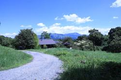 共有道路からの風景