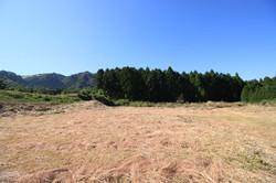 下の段 西側の風景