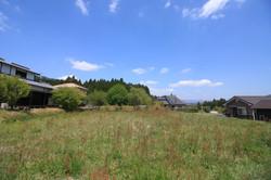北西側の風景