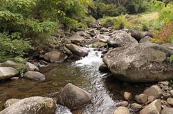 敷地東側に流れる川