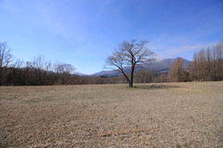 2号地 西側の風景